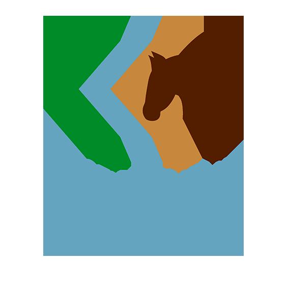 Fédération - Conseil du Cheval en Corse