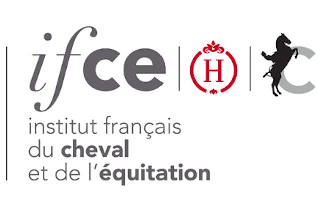 IFCE - Chiffres sur la filière équine